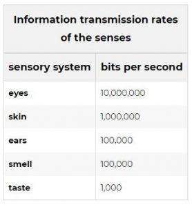 Information transmission rates | Augmentable Marketing